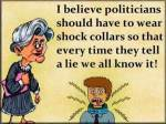 #Politicians #Lies #Truth #Honest